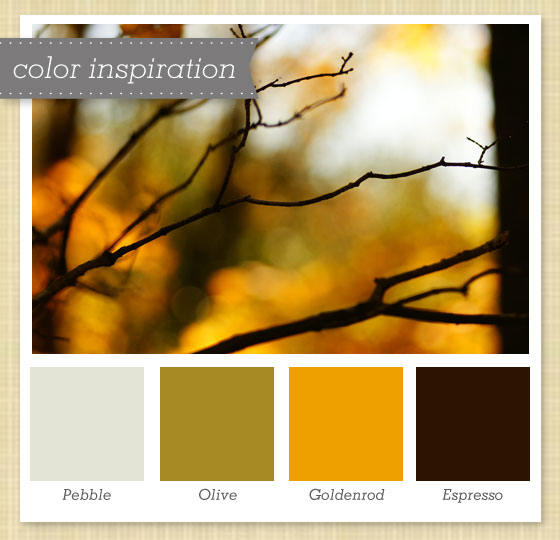Sarah hearts gray olive yellow brown color palette 23 - Grey and brown colour scheme ...