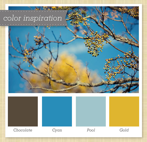 Blue And Brown Color Palette Blue Brown Color Gold